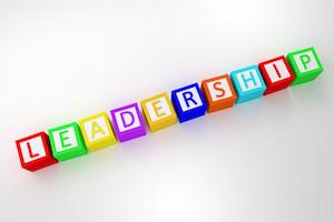 Leadership Definition